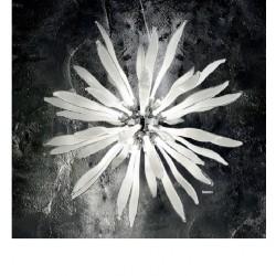 Corallo 086576/8